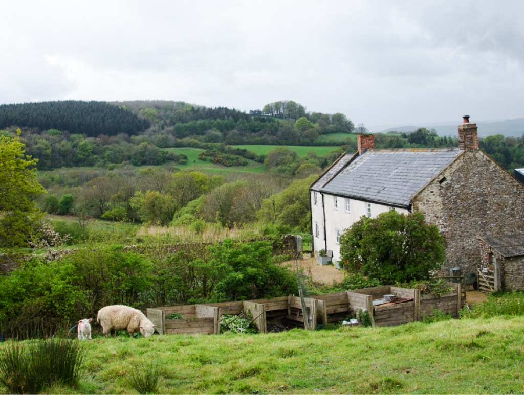 River Cottage Farm and Restaurant in Devon | Bearleader No.29