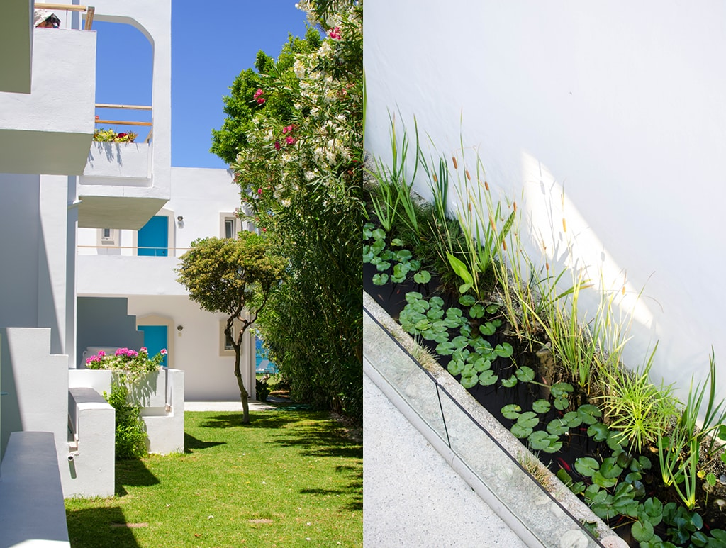 No.5 | Crete's Ammos Hotel and its Good Host-13