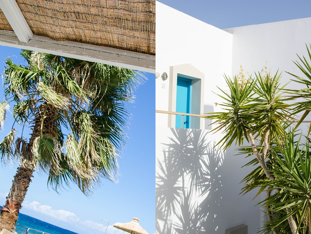No.5 | Crete's Ammos Hotel and its Good Host