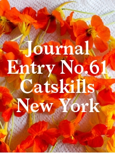Eat the Catskills